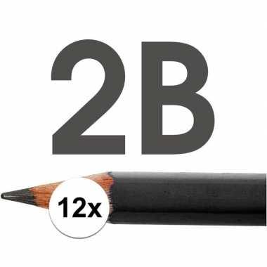 12x 2b potloden voor professioneel gebruik