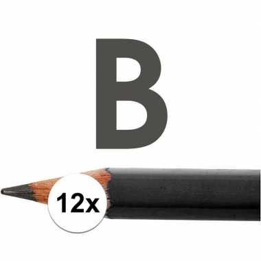 12x b potloden voor professioneel gebruik