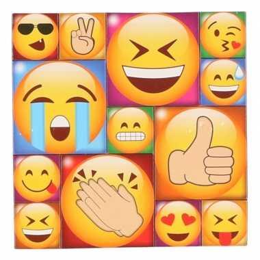 13x smiley/emoticon magneetjes emoji type 1