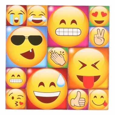 13x smiley/emoticon magneetjes emoji type 3