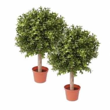2 stuks buxus kunstplanten op stam in pot 36 cm