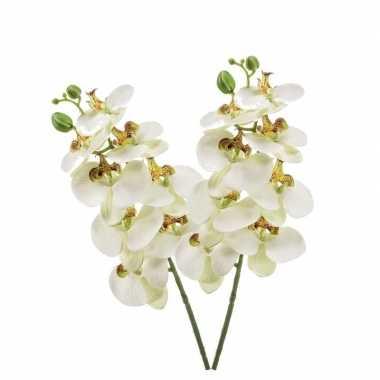 2 stuks nep planten witte phaleanopsis vlinderorchidee kunstbloemen 7