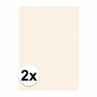 2x 25 vel millimeter papier blok