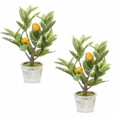 2x citroenbomen/citrusbomen kunstplanten 45 cm in betonnen plantenpot