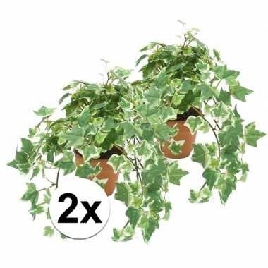 2x groen/witte kunstplant klimop plant in pot