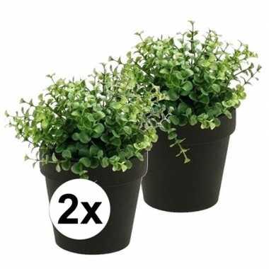 2x groene kunstplant eucalyptus plant in pot