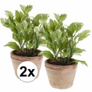 2x groene kunstplant laurier kruiden plant in pot