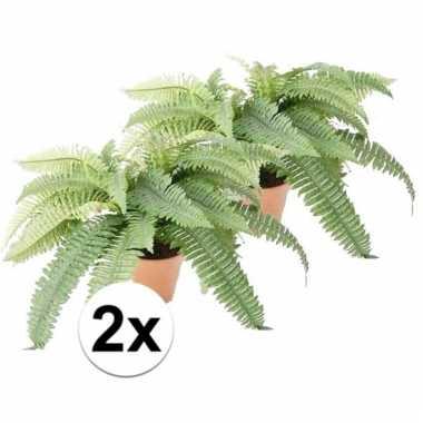 2x groene kunstplant varen plant in pot
