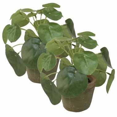 2x groene kunstplanten pilea plant in pot 13 cm