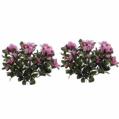2x kunstplanten roze bloemen azalea 20 cm