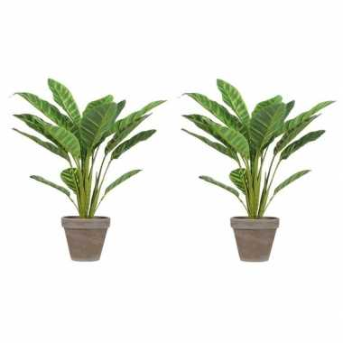 2x lichtgroene kunstplant calathea plant in pot 38 cm