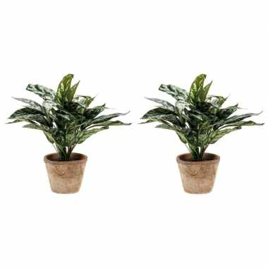 2x nep planten groene aglaonema 35 cm met pot