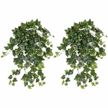 2x nep planten groene/witte hedera helix klimop weerbestendige kunstp