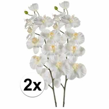 2x phalaenopsis kunst tak 100 cm wit