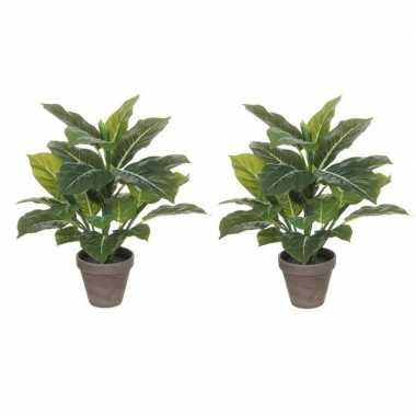 2x planten groene philodendron kunstplanten 49 cm met grijze pot