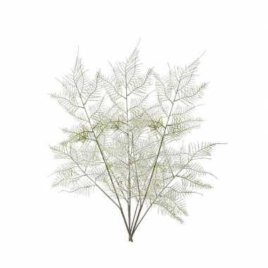3 stuks groene aspergeplant kunsttakken 80 cm