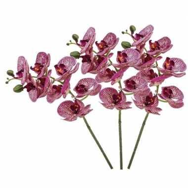 3 stuks nep planten fuchsia roze phaleanopsis vlinderorchidee kunstbl