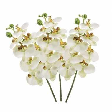 3 stuks nep planten witte phaleanopsis vlinderorchidee kunstbloemen 7