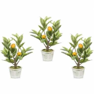Geliefde 3x citroenbomen/citrusbomen kunstplanten 45 cm in betonnen JX55
