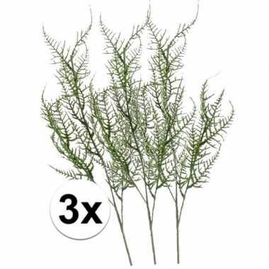 3x groene asparagus kunsttak 73 cm