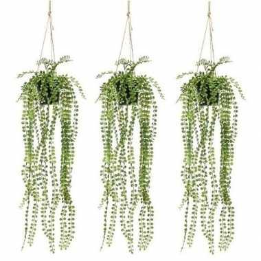 3x groene ficus pumila kunstplanten 60 cm met pot