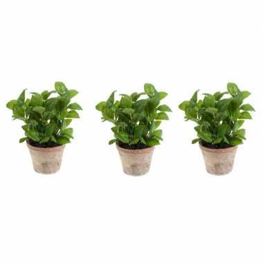 3x groene kunstplant basilicum kruiden plant in pot