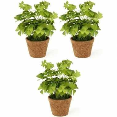 3x groene kunstplanten klaverzuring planten in pot 25 cm