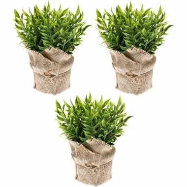3x groene kunstplanten muizendoorn kruiden plant in pot