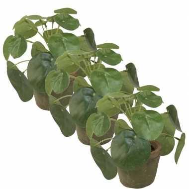3x groene kunstplanten pilea plant in pot 13 cm