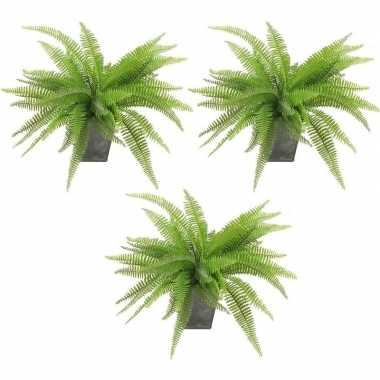 3x groene varen kunstplant 33 cm in zinken pot