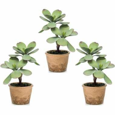 3x kalanchoe vetplanten kunstplanten 34 cm in bruine plantenpot