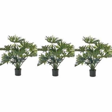 3x nep planten groene philondendron 80 cm