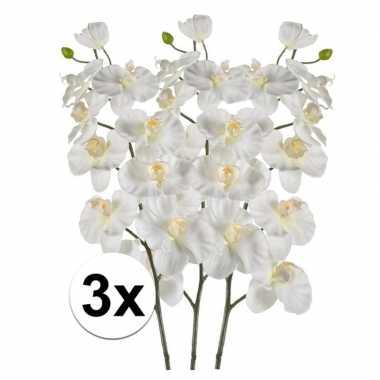 3x phalaenopsis kunst tak 100 cm wit