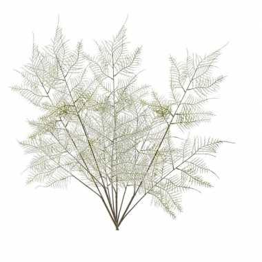 4 stuks groene aspergeplant kunsttakken 80 cm