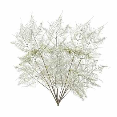 5 stuks groene aspergeplant kunsttakken 80 cm