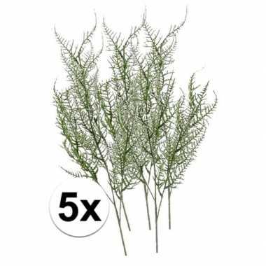 5x groene asparagus kunsttak 75 cm