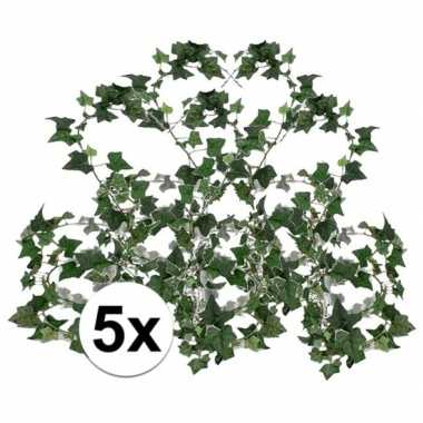 5x klimop slinger groen hedera helix 180 cm