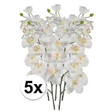 5x phalaenopsis kunst tak 100 cm wit