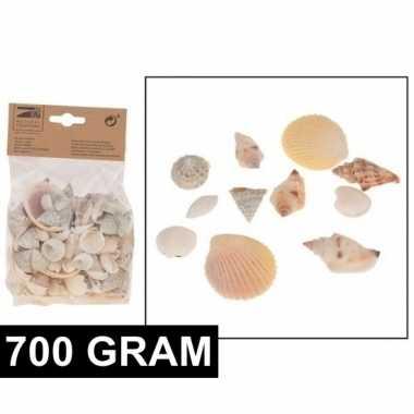 700 gram decoratie schelpjes