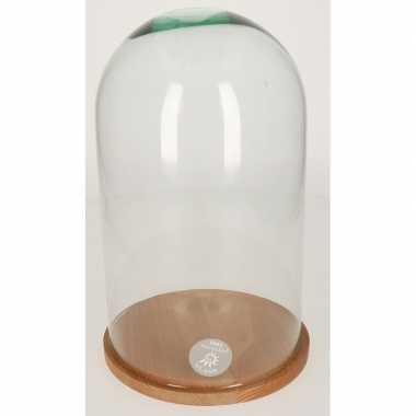 Glazen kap/stolp met houten onderbord 30 cm