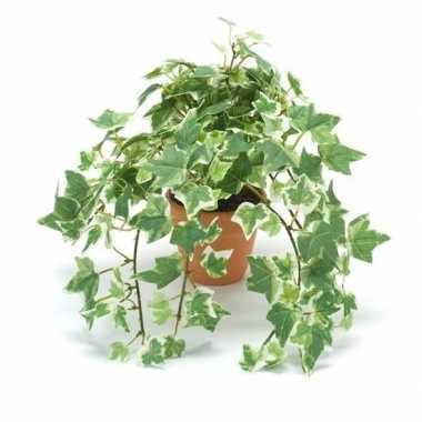 Groen/witte kunstplant klimop plant in pot