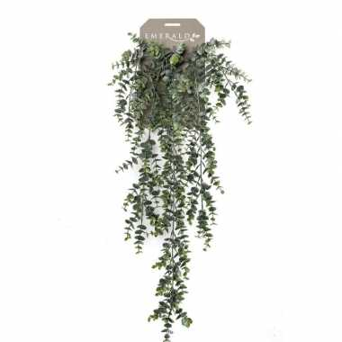 Groene eucalyptus kunstplant hangende tak 75 cm