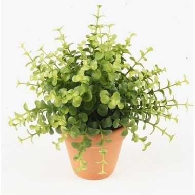 Groene kunstplant eucalyptus plant in pot