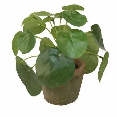 Groene kunstplant pilea plant in pot 13 cm