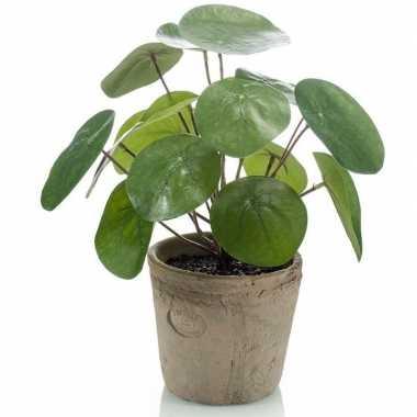 Groene kunstplant pilea plant in pot 25 cm