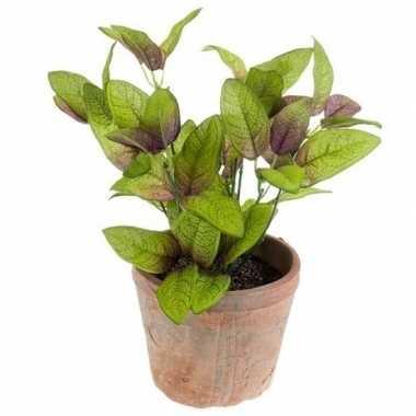 Groene kunstplant salie kruiden plant in pot