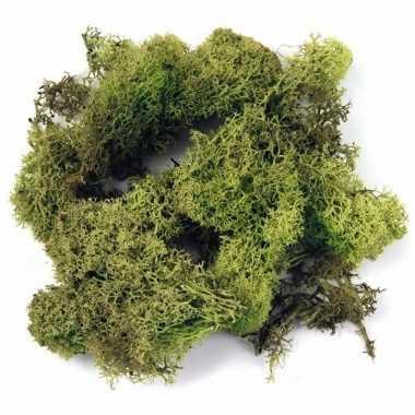 Ijslands mos lichtgroen 200 gram