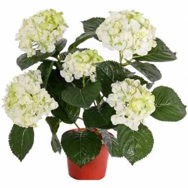 Kunst hortensia wit/groen 36 cm