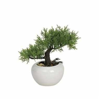 Kunstplant japanse bonsai 18 cm type 2