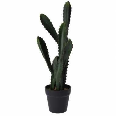 Kunstplant vetplant euphorbia groen 55 cm